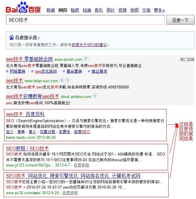 搜索SEO技术,截图百度快照的展现结果页